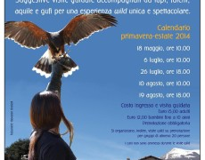 Passeggiate tra Civitella e Rocca di Calascio: tra suggestione e animali selvatici